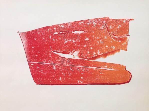 Red Dirt Sled - Monoprint on Cartridge Paper 2x3'